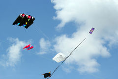 Kites. Royalty Free Stock Photos
