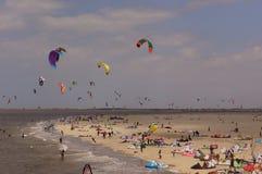 Kites in the sky Stock Image