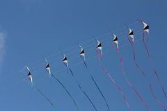Kites in the sky. Eight kites is flying in the sky Royalty Free Stock Photos