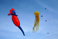 Kites in the sky - freedom royalty free stock image