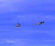 Kites. Soaring high on a blue sky background Royalty Free Stock Photo