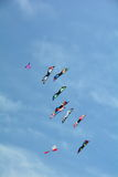 Kites soaring in the sky. Stock Photos