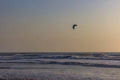 Kitesurf at sea on a sunset, Arambol beach, Goa, India Royalty Free Stock Photography