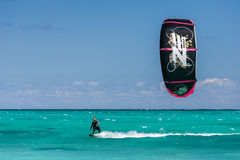 Kitesurfer Royaltyfria Bilder