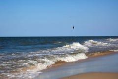 Kitesurfer rider i det öppna havet som är osean med ljust, seglar och fåglar Arkivbild