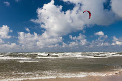 Kitesurfer and seagull Stock Images