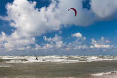Kitesurfer and seagull Stock Photo