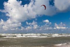 Kitesurfer und Seemöwe Stockfoto