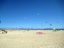 Kitesurfers на красивом пляже Тарифы Испания Стоковое Изображение RF