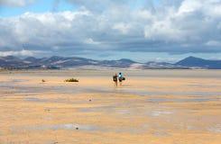 Kitesurfers on Beach Playa de Sotavento, Canary Island Fuerteventura Stock Photos