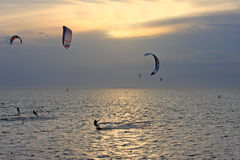Kitesurfers på solnedgången Arkivbild