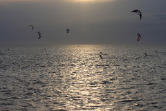 Kitesurfers at sunset Stock Photos
