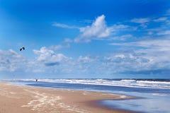 kitesurfing пляжа близкий к Стоковые Изображения
