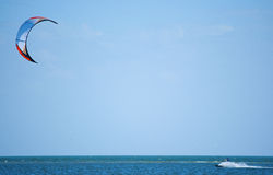 Kitesurfing auf Tampa Bay Florida Stockfotografie