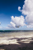 Kitesurfing Boracay Stock Images