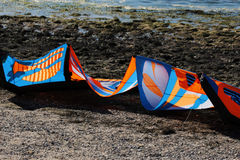 Kitesurfing eller surfing Royaltyfri Fotografi