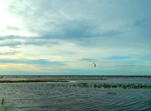 Kitesurfing on the Gulf of Finland at sunset. Russia. stock photos