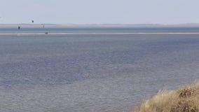 Kitesurfing kite surf Sea coast beach wave tide stock footage