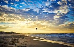 Kitesurfing on ocean at sunset in sardinia Royalty Free Stock Photo