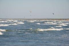 Kitesurfing sul mare Fotografie Stock Libere da Diritti