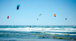 Kitesurfing. A wave of kite surfers in the sea Royalty Free Stock Images