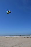 Kiting on a beach in Oostende, Belgium Stock Images