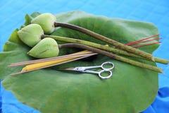 Kits pour l'usage de personnes de couper les cheveux des pré-moines Photo libre de droits