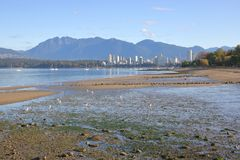 Kitsilano Shoreline and Vancouver Royalty Free Stock Images