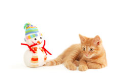 Kitten. With toy snowman isolated on white background Stock Photos