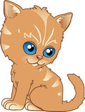 Kitten. Illustration infantile of a little kitten Vector Illustration