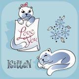 Kitten_2 Arkivfoton