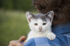 Kitten on arm of the boy outdoors, child huge his love pet. Kitten on the arm of the boy outdoors, child huge his love pet Royalty Free Stock Image