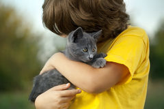 Kitten on arm of the boy outdoors, child huge his love pet Royalty Free Stock Image