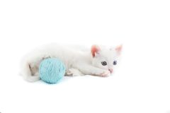 Kitten with ball of the threads. Royalty Free Stock Images