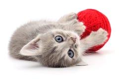 Kitten with ball of yarn. Kitten with ball of yarn on white background stock photography