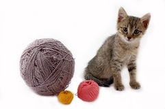 Kitten and balls. Of a wool on a white background Royalty Free Stock Photography