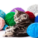 Kitten with balls of threads. Royalty Free Stock Photos