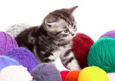 Kitten with balls of threads. Stock Photo