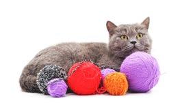 Kitten with balls of yarn. Kitten with balls of yarn on a white background Royalty Free Stock Photos
