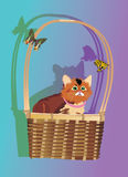 Kitten in basket illustration Stock Image