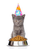 Kitten in birthday hat sitting near a bowl of food. isolated on royalty free stock images