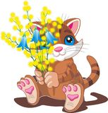 Kitten with a bouquet of spring flowers Stock Photos