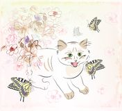 Kitten  and butterflies Stock Image