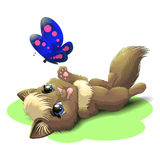 Kitten and butterfly. Illustration of lying cute kitten playing with a blue butterfly Royalty Free Stock Photo