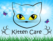 Kitten Care Means Look After och katt Arkivbild