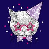 Kitten in a celebratory cap and funny glasses. Vector illustration.   Stock Photo