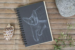 Kitten on chair hand-drawn illustration. Cat by white chalk on black paper. Black paper notepad on wooden background. Vintage wooden table with artwork. Cute Royalty Free Stock Photos