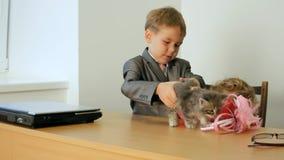 Kitten For Children stock video