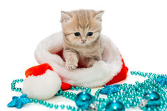 Kitten  and Christmas toys Royalty Free Stock Photography