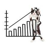 Kitten Drawing Increasing Sales Chart Royalty Free Stock Photo